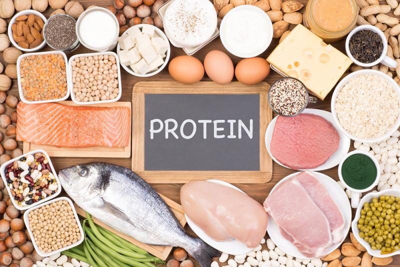 پروتئین بخورید تا لاغر شوید
